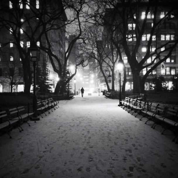 Heidi-Lee-Washington-Square-Park_1260.jpg